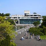 Junior Summer Course 2021 - University College Dublin (UCD)